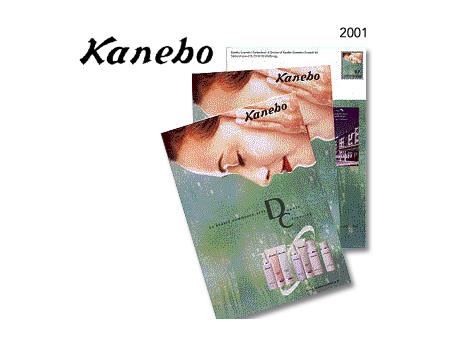 Projekte 2001